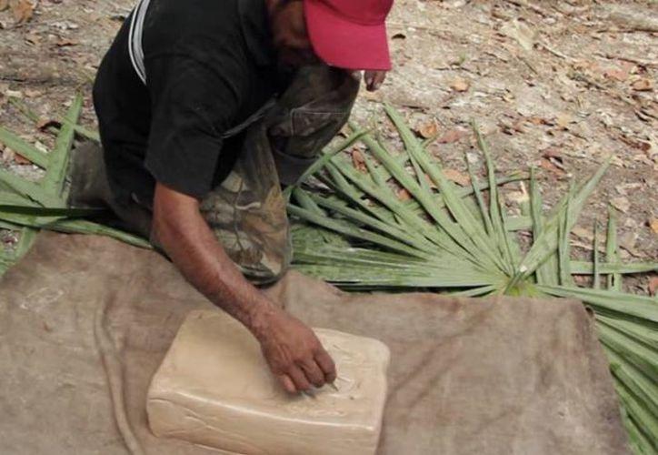 La sequía ha frenado la producción de chicle y otros productos agropecuarios en el sur de Quintana Roo. (Ángel Castilla/SIPSE)