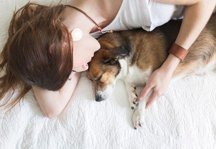 No debes dejar que tu perro duerma en tu cama. (Contexto/Internet)