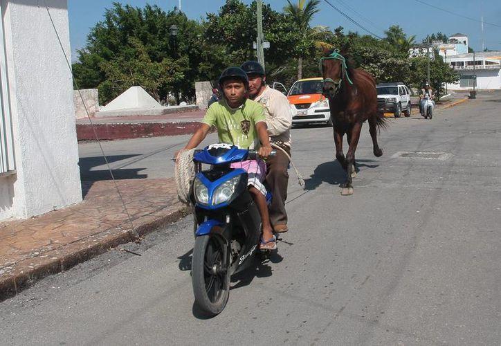 El caballo lesionado fue forzado a caminar hasta un rancho. (Julián Miranda/SIPSE)
