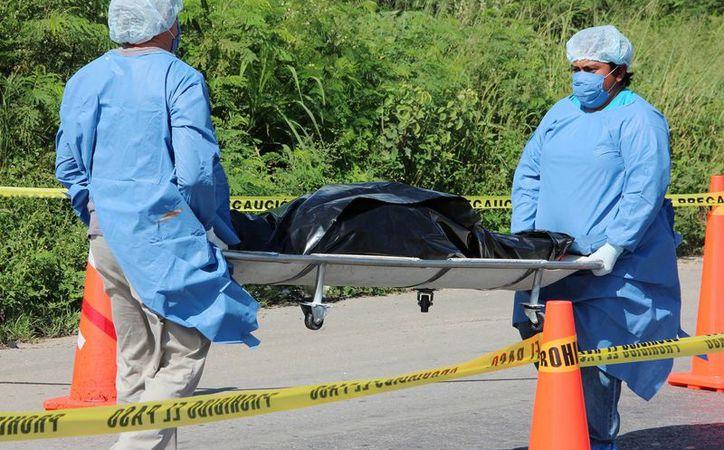 Este lunes fue vinculado a proceso un chofer detenido días después del asesinato en Yucatán de la fotógrafa canadiense del National Geographic, Bárbara McClatchie Andrews. (SIPSE)