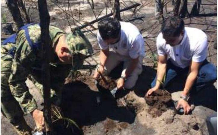 En las actividades participarán autoridades y pobladores de la isla. (Redacción)