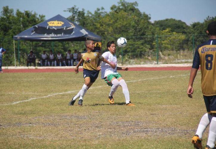 El equipo venció a los Itzaes de Mérida en el Centro de Alto Rendimiento. (Redacción/SIPSE)