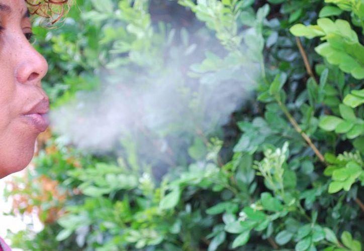 Para frenar los problemas que ocasiona el tabaco, legislador local propone trabajar más en las medidas preventivas, ya que su consumo toma auge en las mujeres. (Tomás Álvarez/SIPSE)