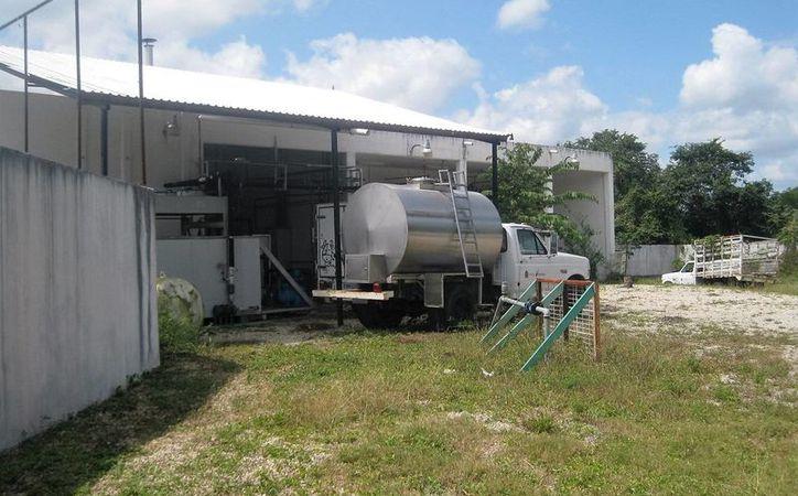 La planta lechera,  ubicada en Bacalar, está en abandono, y suponen que el equipo se encuentra en buen estado. (Javier Ortiz/SIPSE)