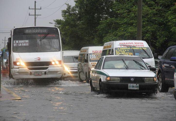 Prevén más lluvias para el municipio de Benito Juárez. (Consuelo Javier/SIPSE)