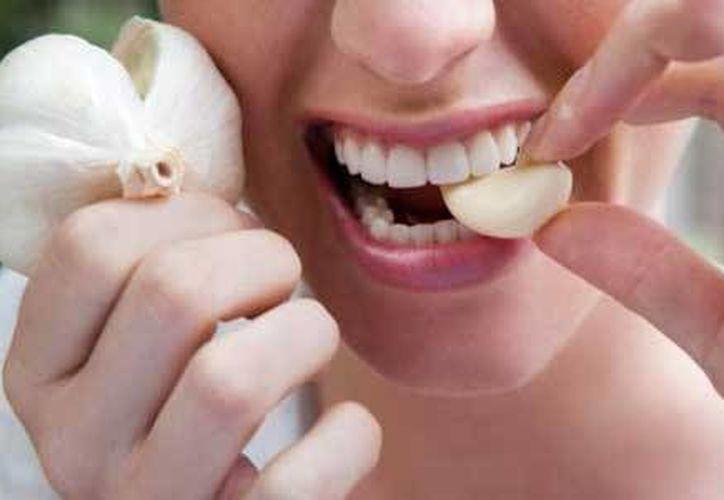 Es uno de los remedios medicinales más utilizados. (Redacción/Mistral.com)