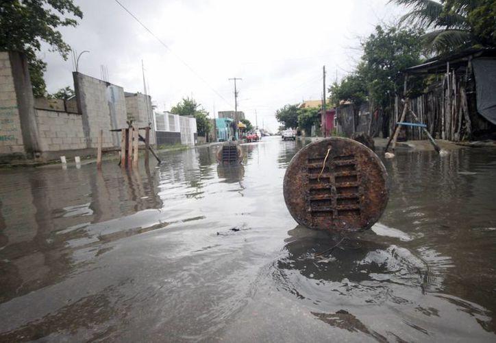 Imagen de una calle inundada después de una lluvia intermitente. México enfrenta innumerables amenazas naturales y en Yucatán, hay una en particular: los huracanes. (Milenio Novedades)