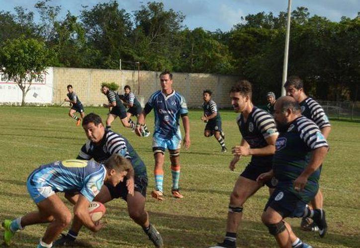 Los Hammerheads de Cancún continúan adjudicándose éxitos en el campeonato nacional de rugby. (Ángel Mazariego/SIPSE)