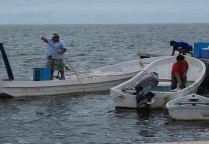 Los puertos yucatecos fueron cerrados por la llegada del Huracán Earl a costas de Quintana Roo y Belice. (Archivo/ Milenio Novedades)