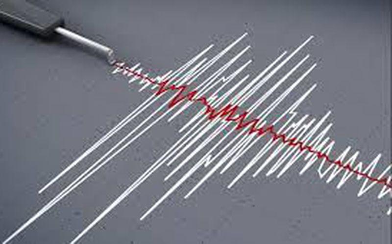 Así se vivió el sismo de magnitud 6.6 que sacudió Chile
