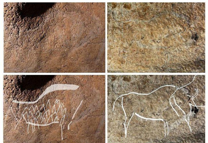 Fotografías facilitadas por la Diputación de Bizkaia, de algunos de los 70 grabados de animales del paleolítico superior que un grupo de arqueólogos de la Diputación de Bizkaia han hallado en la cueva de Atxurra. (EFE)