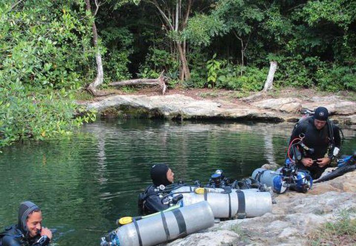 Los cenotes y ríos subterráneos de Cozumel son aún poco conocidos por los turistas. (Gustavo Villegas/SIPSE)