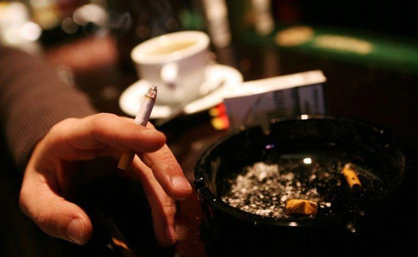 La nicotina contenida en el tabaco, además de ser tóxica, causa dependencia física. (meganoticias.cl)