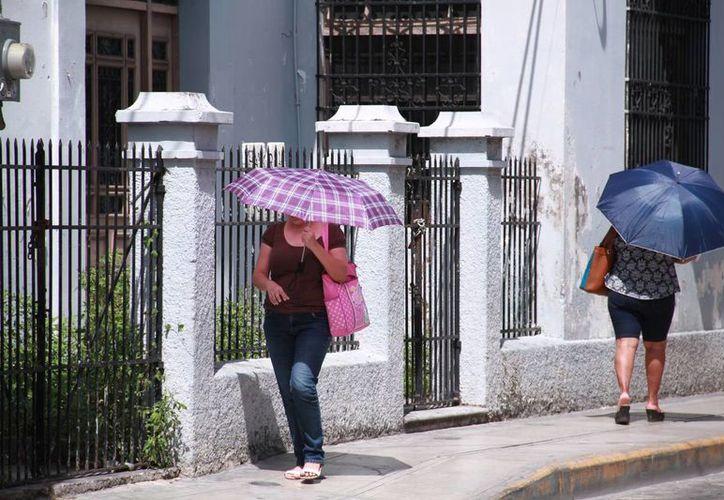 Se pronostica que el calor prevalecerá en esta semana en Yucatán. (Jorge Acosta/Milenio Novedades)