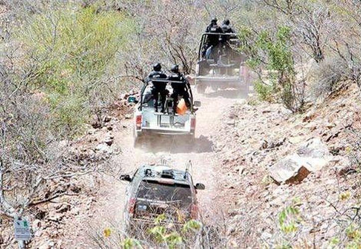 Una ambulancia y una tanqueta que tiene equipo de rastreo satelital forman parte del convoy que trabaja en la búsqueda de <i>La Tuta</i> en Michoacán. (Milenio)