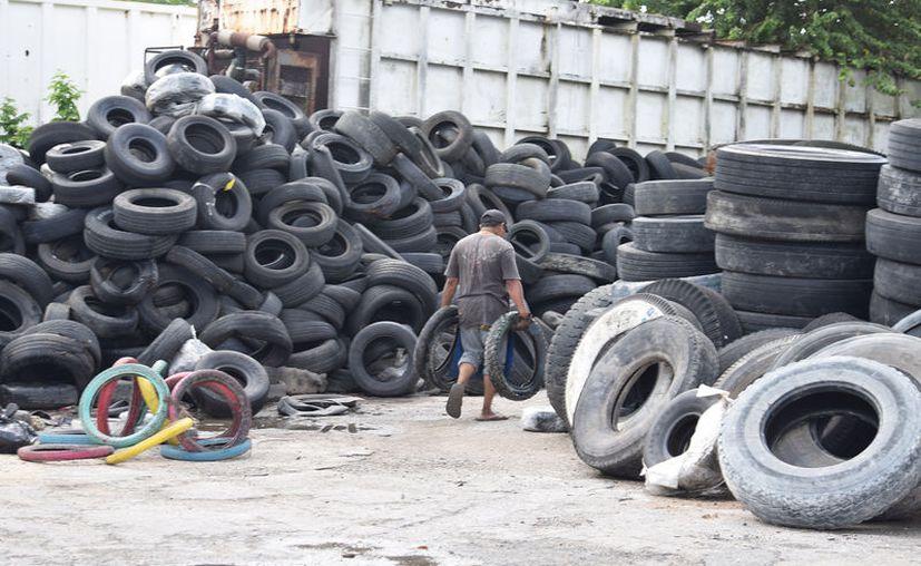 Para la actual administración municipal de Cozumel es una prioridad resolver el problema de la basura, sobre todo las llantas. (Gustavo Villegas/SIPSE)