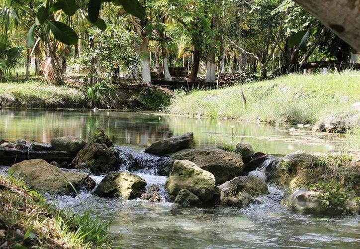 El río puede ser usado para el Kayak. (Edgardo Rodríguez/SIPSE)