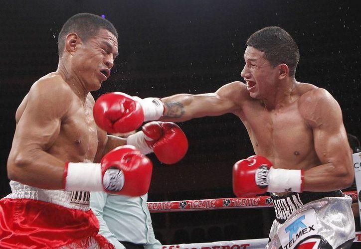 """El cancunense Miguel Berchelt (d) tendrá enfrente a un duro rival, el puertorriqueño Román """"Rocky"""" Martínez. (Milenio Novedades)"""