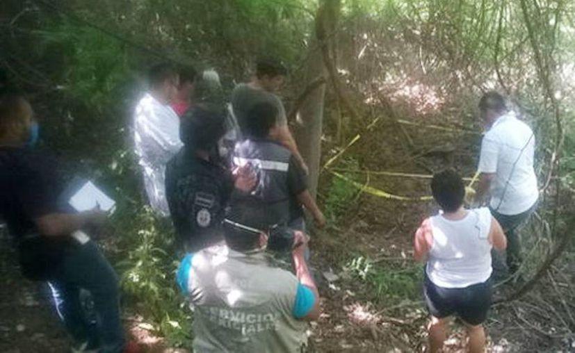Las siete fosas fueron encontradas en la colonia Olímpica, un asentamiento irregular en las inmediaciones del parque nacional El Veladero. (Javier Trujillo/Milenio)