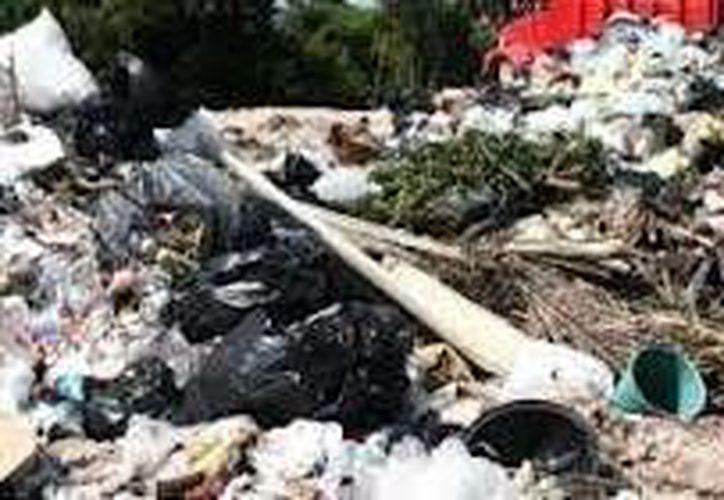 En promedio a diario se depositan en ese lugar 35 toneladas de basura. (Javier Ortiz/SIPSE)