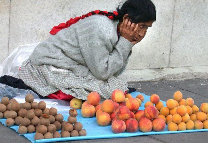 Una mujer vende frutas sobre una manta en una calle en México. (EFE/Archivo)