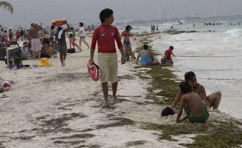 Alrededor de 68 guardavidas resguardan a quienes visitan las playas públicas del estado. (Redacción/SIPSE)