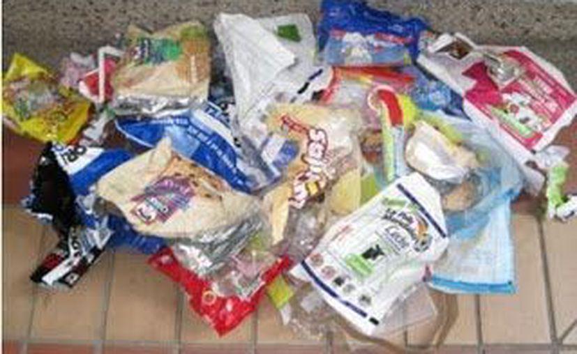 Desechos plásticos. (Milenio Novedades)