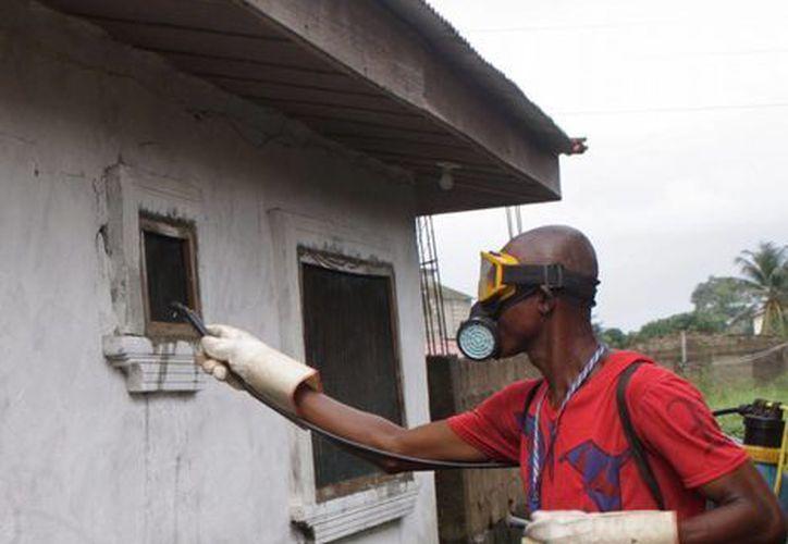 Un hombre esparce sustancias químicas para evitar el contagio del ébola en Monrovia, Liberia, país donde se han dado la mayoría de los casos de la epidemia. (Agencias)
