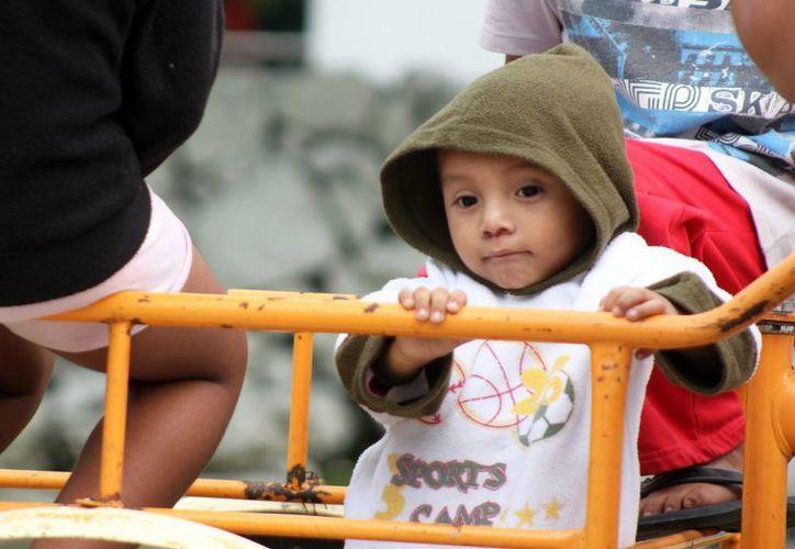 Se recomienda tener a los niños bien abrigados y consumir frutas y verduras con vitamina C. (Milenio Novedades)