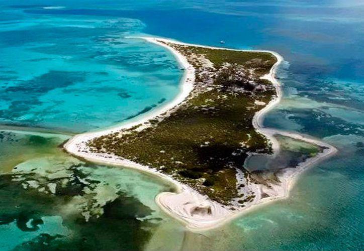 El arrecife Alacranes estará ahora más vigilado, y las autoridades han limitado el número de visitantes a poco más de 100 por día. (Milenio Novedades)