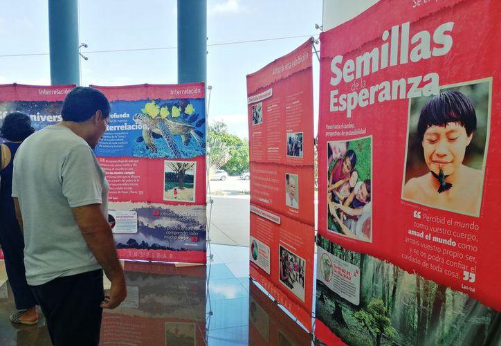 La exposición está compuesta por 24 paneles. (Octavio Martínez/SIPSE)