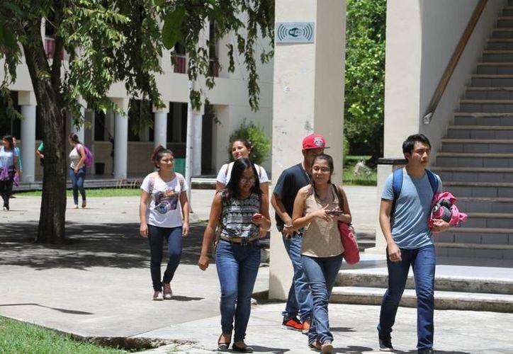Hasta ahora el programa PUENTES ha recibido 44 solicitudes de estudiantes universitarios de estados como: Texas, California, Georgia e Illinois. (SIPSE)