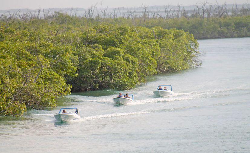 El proyecto tendría una superficie de 650.69 metros cuadrados de Zona Federal Marítimo Terrestre. (Israel Leal/SIPSE)