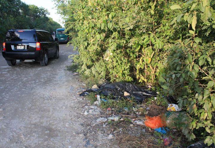 El cadáver del jaguar fue encontrado en la terracería que une a Villas del Sol con Misión de Las Flores, al poniente de la ciudad. (Octavio Martínez/SIPSE)