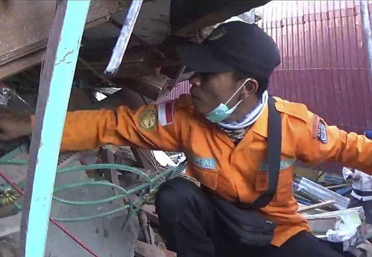Rescatistas buscan víctimas entre los escombros de un edificio derrumbado tras un terremoto en Pidie, en la provincia de Aceh, en Indonesia. (AP)