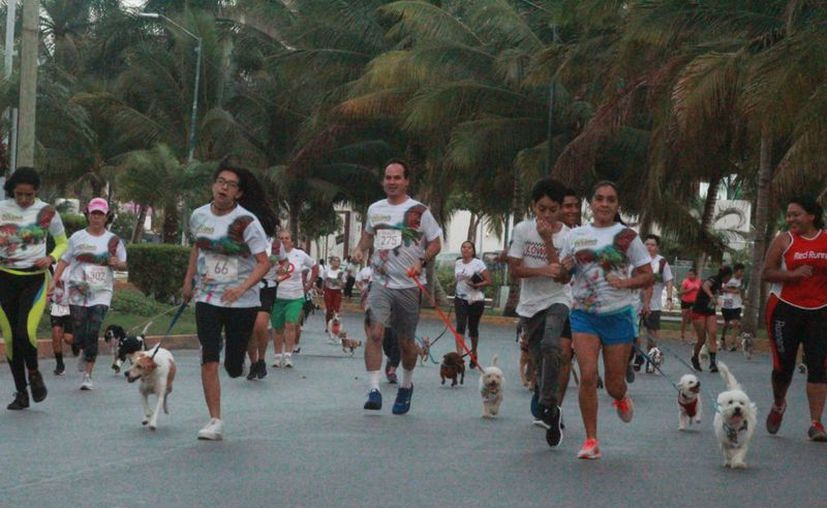 La divertida competencia se llevó a cabo en el circuito de la avenida Bonampak. (Raúl Caballero/SIPSE)
