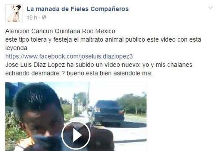El video compartido en Facebook, causó indignación entre los usuarios por el maltrato al animal. (Cortesía/Facebook)