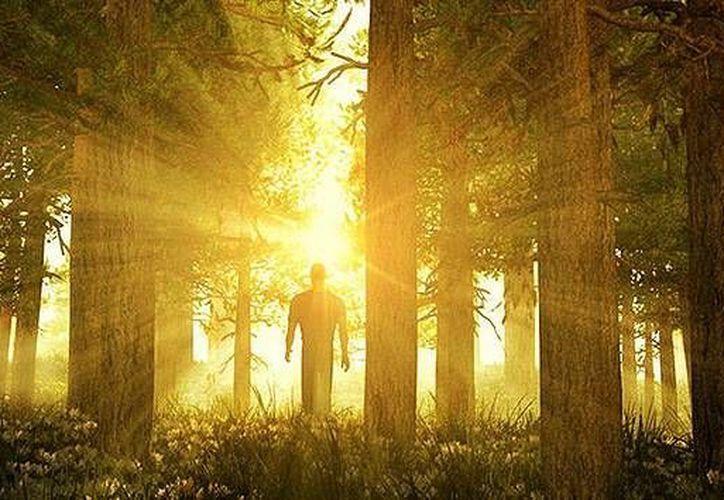 Muchas de las personas entrevistadas mencionaron que vieron una luz brillante o el sol. (actualidad.rt.com)