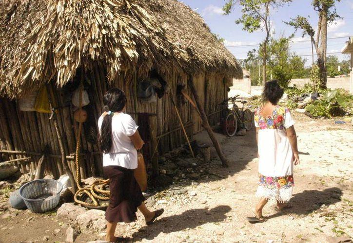 Los habitantes viven en la miseria y abandono. (Rossy Lópoez/SIPSE)