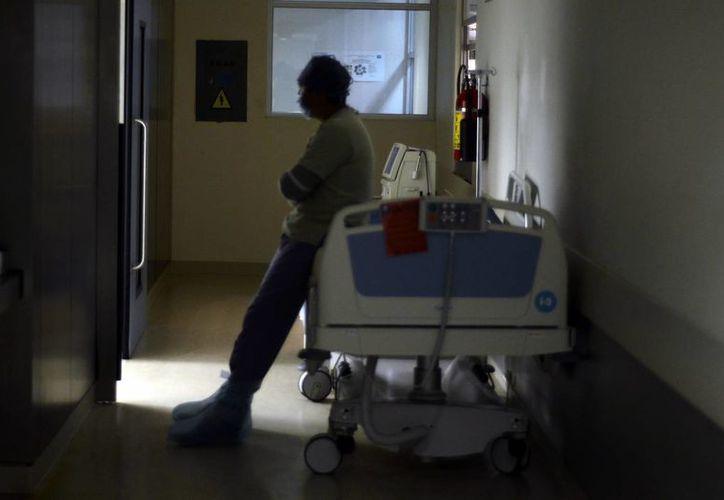Se prevé que en una semana el donador pueda hacer su vida normal. Imagen de uno de los pasillos del hospital. (Milenio Novedades)