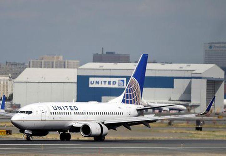 United Airlines anunció este martes la suspensión del transporte de mascotas.  (AP)