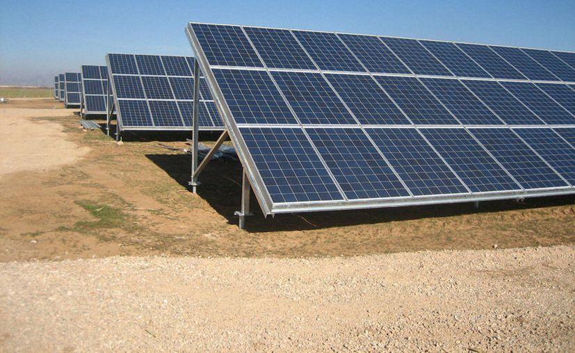 """La organización Defensores por el Territorio """"Múuch' Xíimbal"""" pretende evitar la instalación de plantas solares en la Península de Yucatán. (Columnas de México)"""