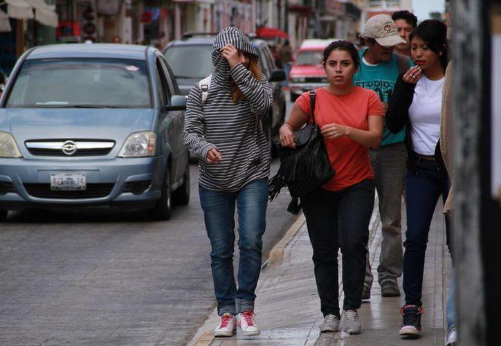 En Mérida, la capital yucateca, se registraron valores de 14.1 grados. La temperatura podría bajar aún más no solo en Mérida sino en Yucatán, de acuerdo a la Conagua. (Jorge Acosta/Milenio Novedades)