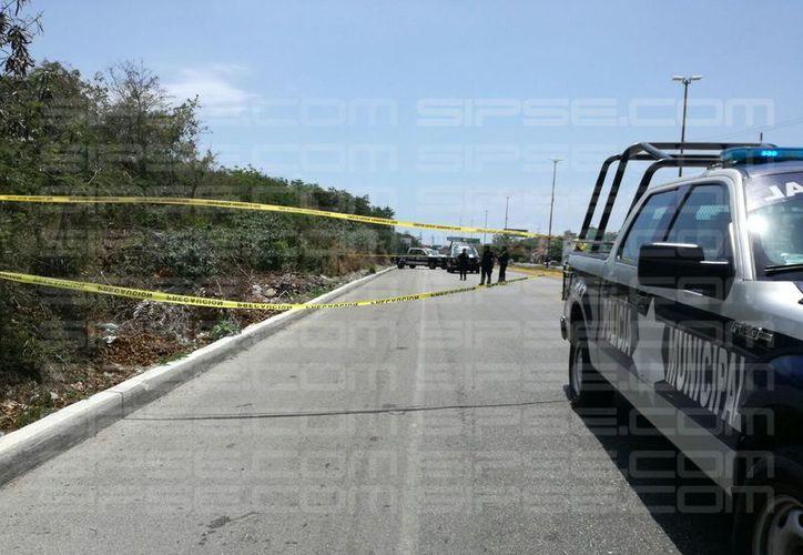 Los policías asistieron al lugar de los hechos para la verificación del reporte. (Damara Hernández/SIPSE).