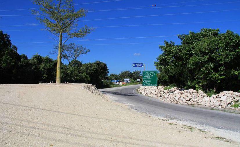 Al lugar donde se instalaría el parador se ubica el árbol de ceiba. (Luis Soto/SIPSE)