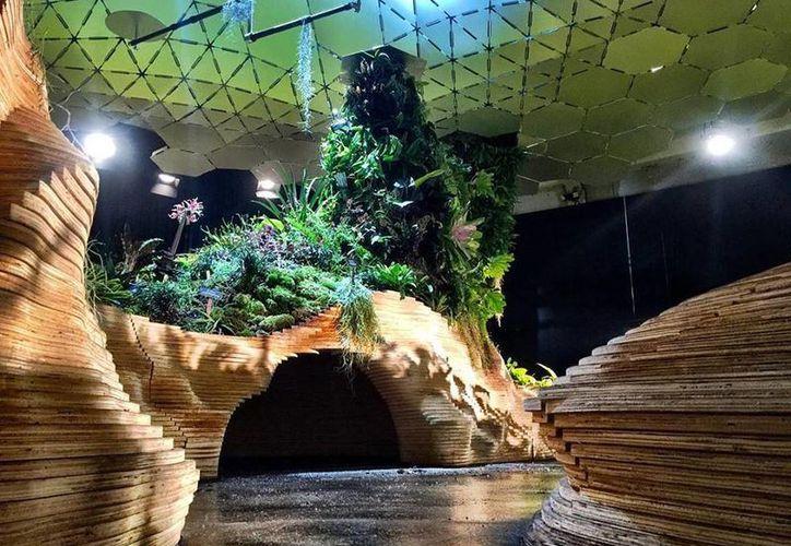 En imagen, el laboratorio Lowline, un prototipo del proyecto que planea construir un bosque bajo tierra. (Imágenes/ Facebook/ The Lowline)
