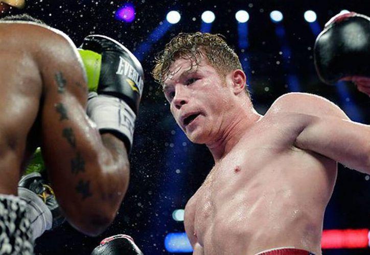 'El Canelo' derrotó y quitó el invicto el pasado mes al estadunidense Austin Trout, en pelea de unificación de los títulos del peso súper welter del CMB y AMB. (Internet)