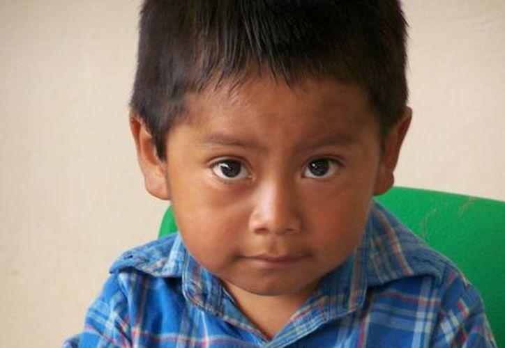La Dirección de Educación Indígena atiende a 13,372 alumnos de primaria de 172 escuelas y a 615 docentes. (prnewswire.com)