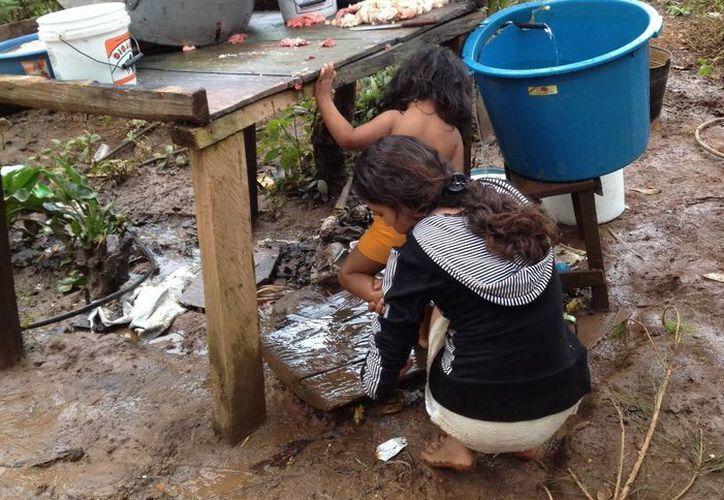 Kelloggs buscará atacar los problemas de alimentación en Latinoamérica donando sus cereales. (Archivo Notimex)