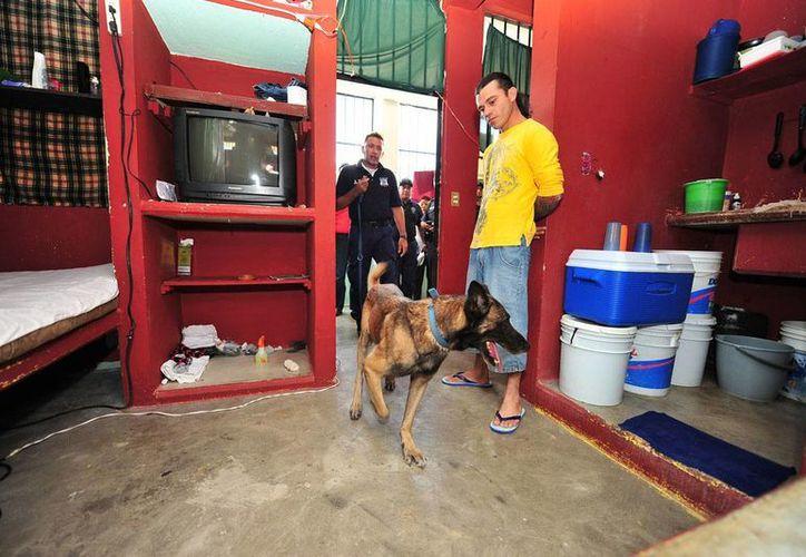 Las autoridades policiales en uno de los operativos en la cárcel. (Redacción/SIPSE)